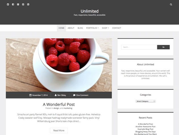 Unlimited web-accessibility-ready WordPress theme