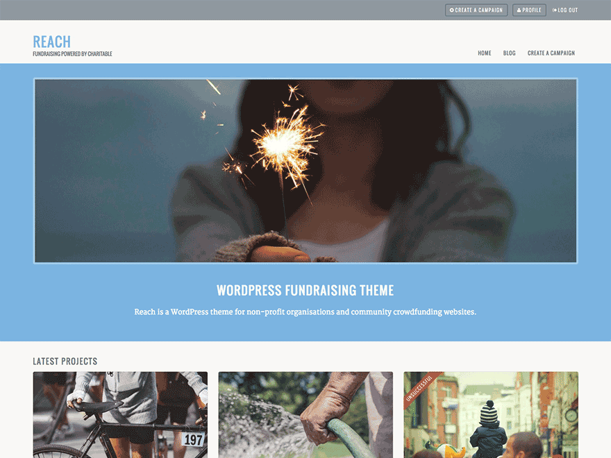 reach free wordpress themes