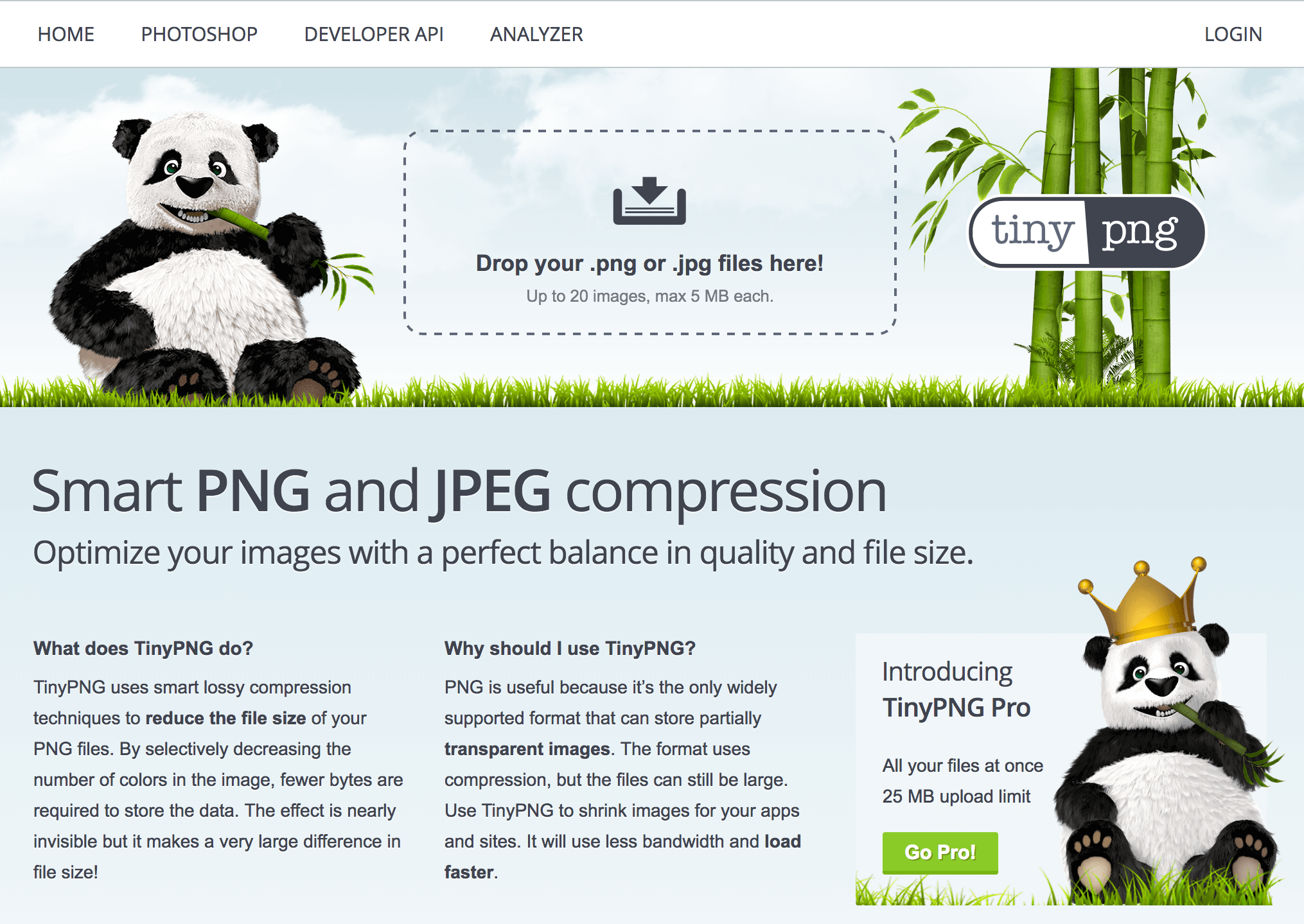The TinyPNG home page.