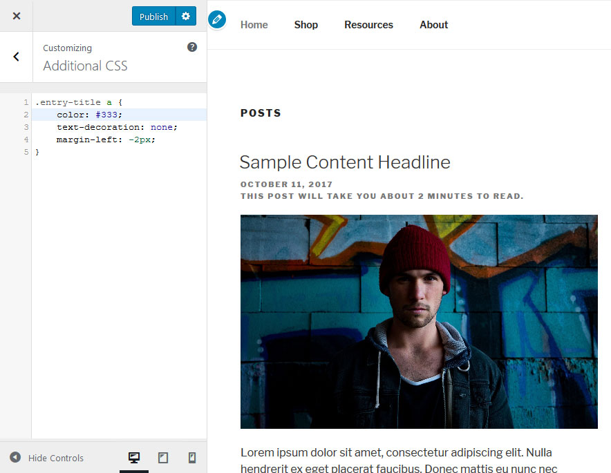 custom css in wordpress customizer