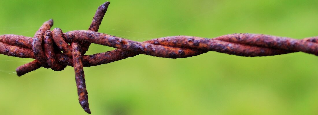 A strand of barbed wire.
