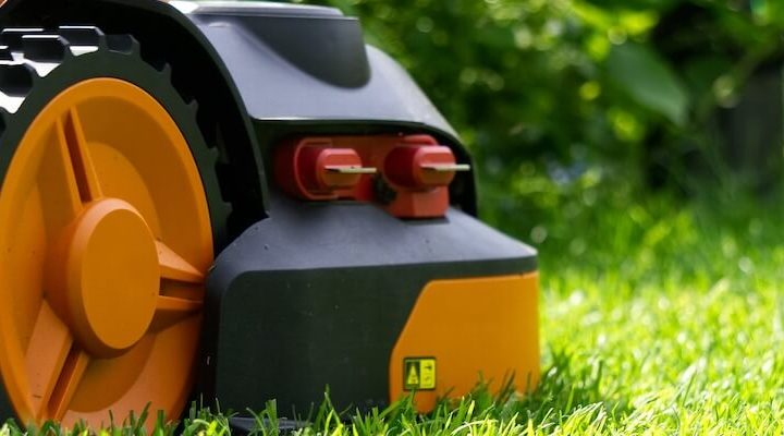 A robot mower, surveying its lawn.