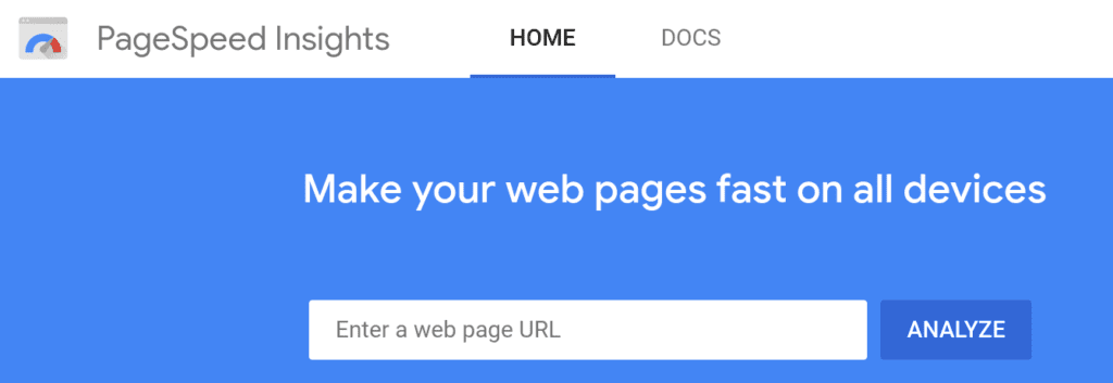 Google PageSpeed Insights homepage.