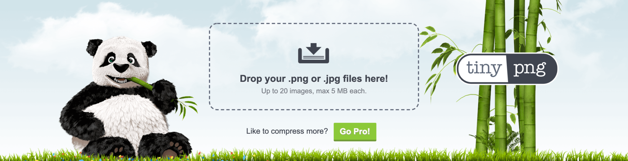 The TinyPNG image file compression tool.