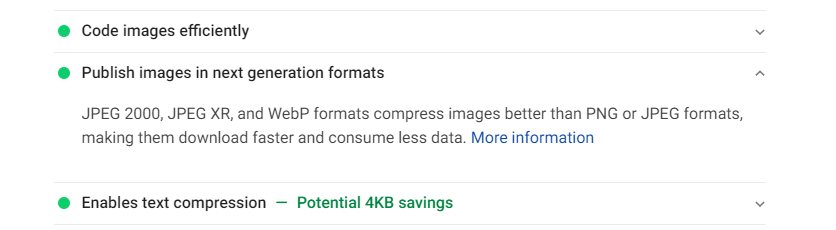 What PageSpeed Insights has to say about WebP images.